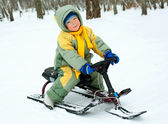 Boy with a sledge — Stock Photo