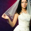 Beautiful brunette bride — Stock Photo #1894071