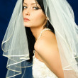 Beautiful brunette bride — Stock Photo #1894085