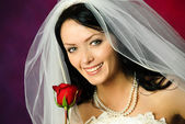 Young bride with a rose — Stock Photo