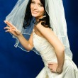Beautiful brunette bride — Stock Photo #1917354