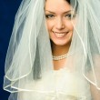 Beautiful brunette bride — Stock Photo