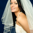 Stock Photo: Beautiful brunette bride