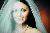 Beautiful happy brunette bride wearing a veil — Stok fotoğraf