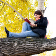 Girl sitting on the tree and reading a book - Stock Photo