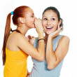 Stock Photo: Two gossiping girls