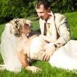 Bride and groom on the grass - Stok fotoğraf