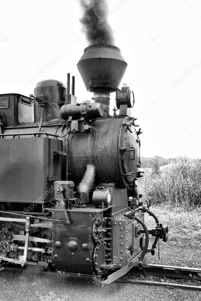 Old steam train.Narrow gauge. — Stock Photo #2231438