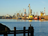Port in Gdansk — Stock Photo