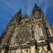 Saint Vitus's Cathedral — Stock Photo #1759065
