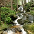 Stock Photo: Brook in forest - long exposure