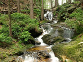 Brook in forest - long exposure — Stock Photo