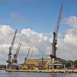 Kräne im Hafen — Stockfoto