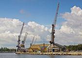Cranes in harbour — Stock Photo
