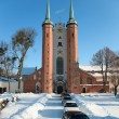 Cathedral Oliwa in winter, Poland. — Stock Photo #2569722