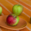 Apples — Stock Photo #1739283