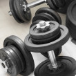 Weights — Stock Photo