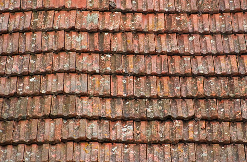 Background of old grungy roof tiles with moss — Stock Photo #1874707