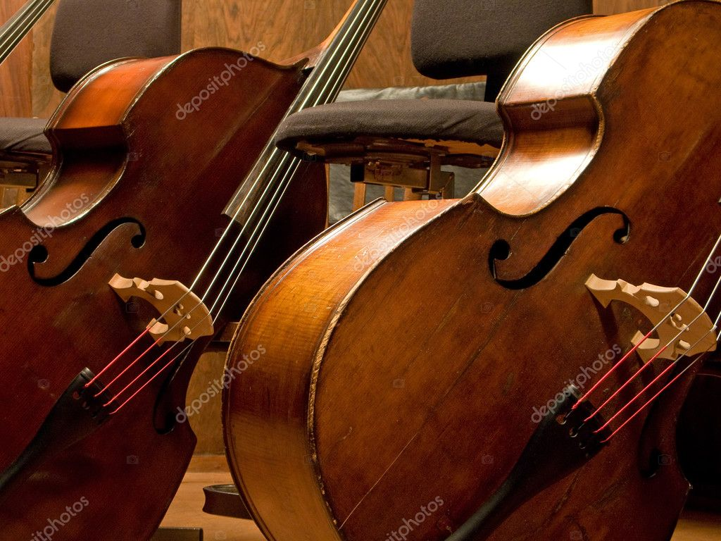 Two contra basses closeup  Stock Photo #2222474
