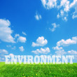 Stock Photo: Environment caption on green land
