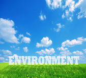 Environment caption on green land — Stock Photo