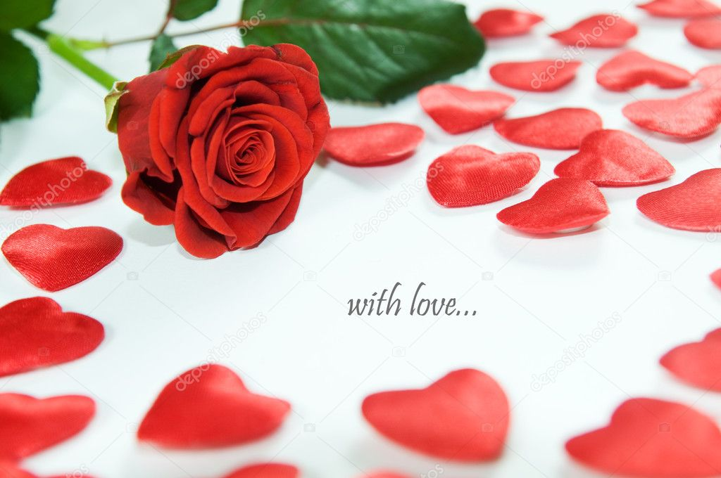 Red rose and little hears on white background. Space for your text  — Stock Photo #2027817