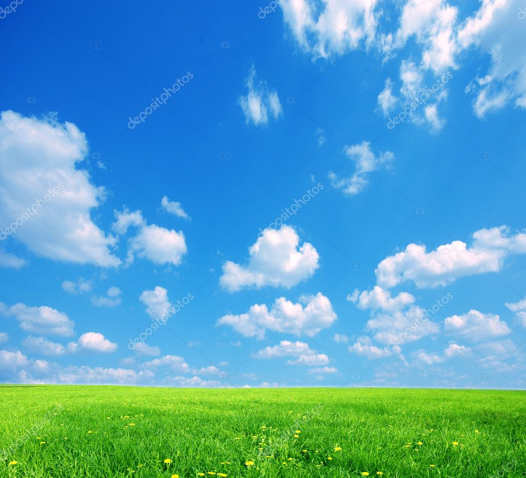 Nature background. Clear spring summer landscape with green grass and blue sky. — Photo #2029814