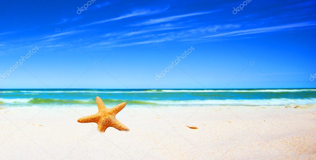Starfish on a tropical beach  Foto de Stock   #2030045