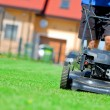 Stock fotografie: Mowing the lawn