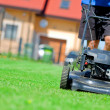 Mowing the lawn - Foto Stock