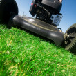 The lawn mower — 图库照片