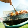 Barbecue — Stock Photo #2046406