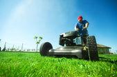 Gräsklippning — Stockfoto