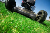 The lawn mower — Stock Photo