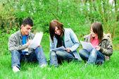 Junge schüler lernen im freien — Stockfoto