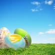 Colorful easter eggs in nature — Stock Photo