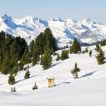 Beautiful winter scenery — Stock Photo