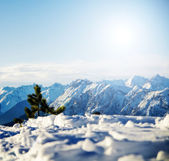 Mountain snowy winter scenery — Stock Photo