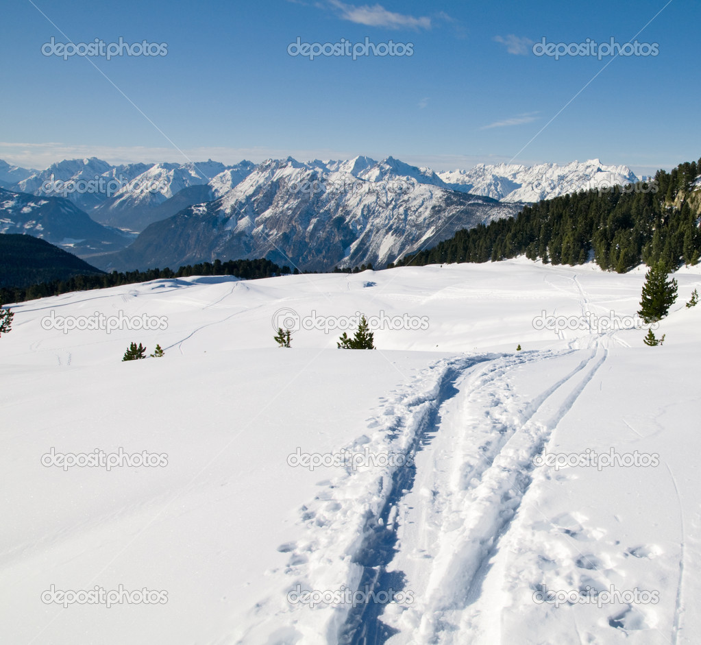 Beautiful Winter Scenery With Footpath