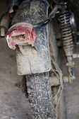 Old Motorbike — Stock Photo