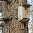 Birdhouse — Stockfoto #1747832