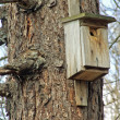 Birdhouse — Foto Stock #1747832
