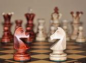 Chess horses — Stock Photo