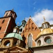Cathedral at Wawel hill in Cracow — Stock Photo