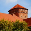 Wawel Royal Castle in Cracow — стоковое фото #1971450