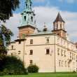 Wawel Royal Castle in Cracow — стоковое фото #1971526