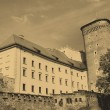 Wawel Royal Castle in Cracow — стоковое фото #1978728