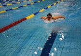 Cоревнования по плаванию — Стоковое фото