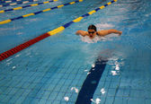 Swimming race — Stock fotografie