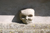 Skull on a grave — Stock Photo